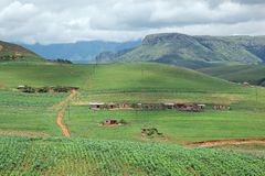 Rural settlement. On foothills of the Drakensberg mountains, KwaZulu-Natal, South Africa Royalty Free Stock Image
