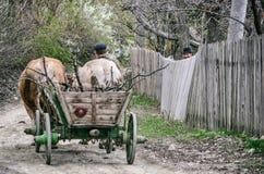 Rural. Shot taken in Meledic, Buzau, Romania, 2011 Royalty Free Stock Photography
