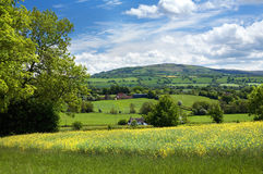 Rural Shropshire, England. A rural Springtime view over English countryside Royalty Free Stock Images