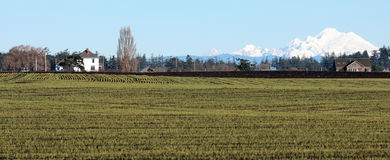 Rural Skagit Valley landscape Stock Image