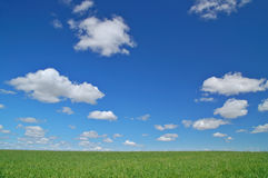 Rural spring countryside royalty free stock image