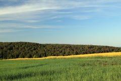 Rural spring landscape. Rural landscape near bad arolsen, hesse, germany royalty free stock photography