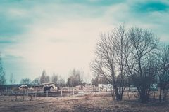Rural spring landscape royalty free stock photos
