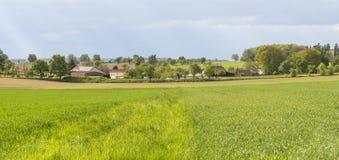 Rural springtime scenery Stock Photography