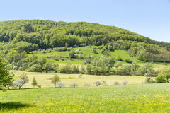 Rural springtime scenery. Sunny illuminated idyllic rural springtime scenery in Hohenlohe, a district in Southern Germany Stock Photography