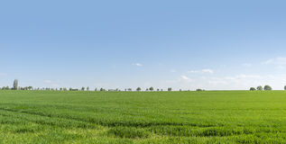 Rural springtime scenery Royalty Free Stock Photography