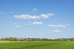 Rural springtime scenery Stock Images