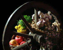 Rural still life Royalty Free Stock Images
