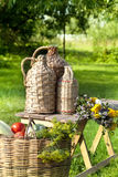 Rural still life with basket of vegetables Royalty Free Stock Photos