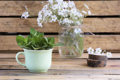 Rural still life with a green cup of mint. Rural still life with a green cup of Lemon balm on a wooden table Stock Images