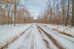 Rural straight dirt road in the snowy winter surrounded by forest stock images