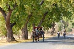 Rural street in Bagan Royalty Free Stock Photography