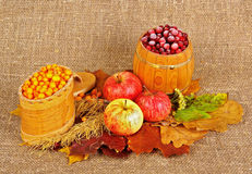 Rural style life c. Ripe apples, frozen berrys and dried leafs on canvas background Royalty Free Stock Photos