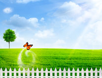 Rural summer abstract backgrounds Royalty Free Stock Images
