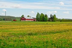 Rural summer Finland Stock Photography