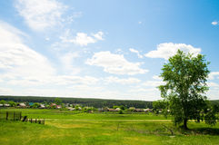 Rural summer landscape. Nature beautiful Stock Photography