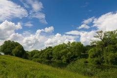 Rural summer landscape Royalty Free Stock Image