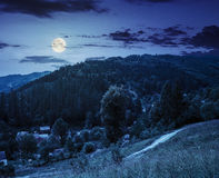 Rural summer landscape in high mountains at night Royalty Free Stock Images