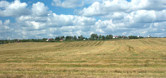 Rural summer landscape with mown field Stock Image