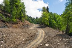 Free Rural Summer Landscape. Off-road In The Forest. Royalty Free Stock Images - 114464729