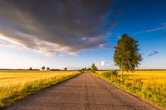 Rural summer landscape with old asphalt road Royalty Free Stock Image