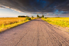 Rural summer landscape with old asphalt road Stock Photography