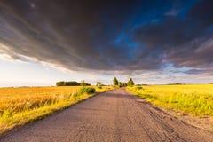 Rural summer landscape with old asphalt road Stock Images