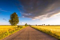 Rural summer landscape with old asphalt road Stock Photo