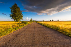 Rural summer landscape with old asphalt road Royalty Free Stock Images