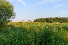 Rural summer landscape Stock Photos