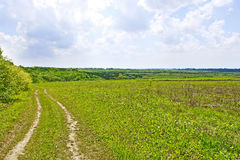 Rural summer landscape with soil road Stock Photos