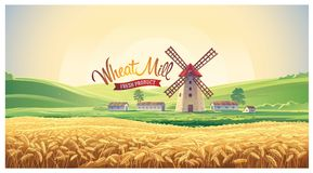Rural summer landscape with windmill. And wheat field. Vector illustration Stock Photo