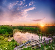 Rural summer sunrise Royalty Free Stock Image
