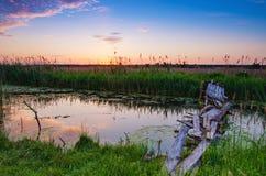 Rural summer sunrise Stock Image