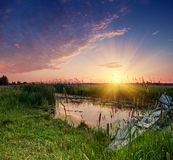 Rural summer sunrise Stock Images