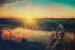 Rural summer sunrise Royalty Free Stock Photos