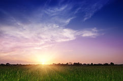 Rural summer sunset. Landscape with  dramatic colorful sky and sun Royalty Free Stock Images