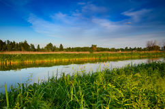 Rural summer sunset. Landscape with river and dramatic colorful sky Royalty Free Stock Images