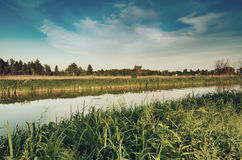 Rural summer sunset. Landscape with river and dramatic colorful sky Royalty Free Stock Image