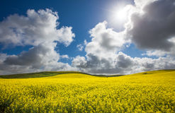 Rural Sun Burst Royalty Free Stock Images