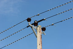Rural Supply. Electricity supply lines to a rural area Royalty Free Stock Image