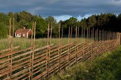 Rural sweden Stock Image