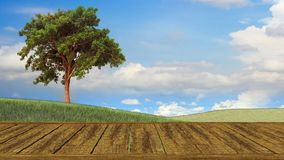 Rural table of wood and free space with summer landscape Stock Photography
