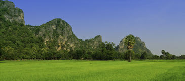 Rural of Thailand. Stock Photo