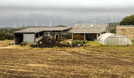 Farm in the meadows. Of the north of Spain in a cloudy day stock photo