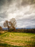 Rural Tuscany Royalty Free Stock Photo