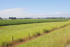 Rural Unpopulated Farm Landscape Stock Photo