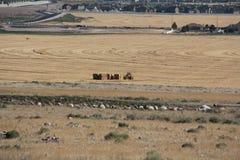Rural Utah Royalty Free Stock Photography
