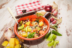 Rural vegetarian broth soup with colorful vegetables Stock Image