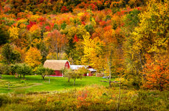 Rural Vermont in Autumn. Typical Red Barn at the Edge of an Autumn Forest in Vermont Stock Photos